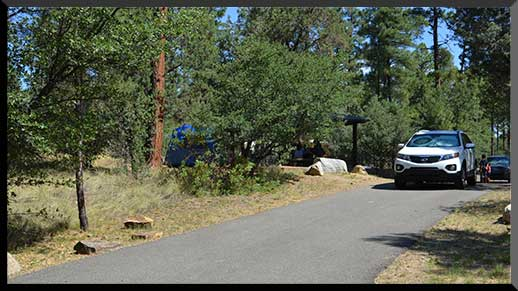 Paved roads make Lynx Lake Campground easily accessible to low-clearance vehicles.