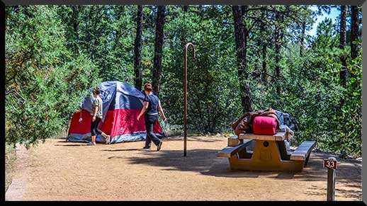 Spacious, secluded tent site in Lynx Lake Campground.