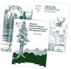 Screenshot of covers for 3 forest plan documents.