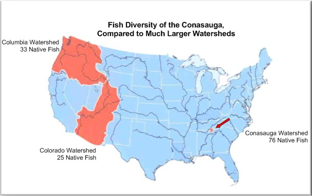 Map of the Conasauga River Watershed.