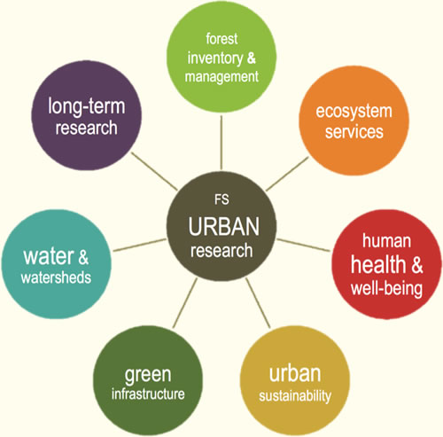 Diagram showing the different areas of Forest Service Urban Research
