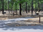 Typical campsite in the ponderosa pines of Bonito Campground with grill, fire ring, and table.