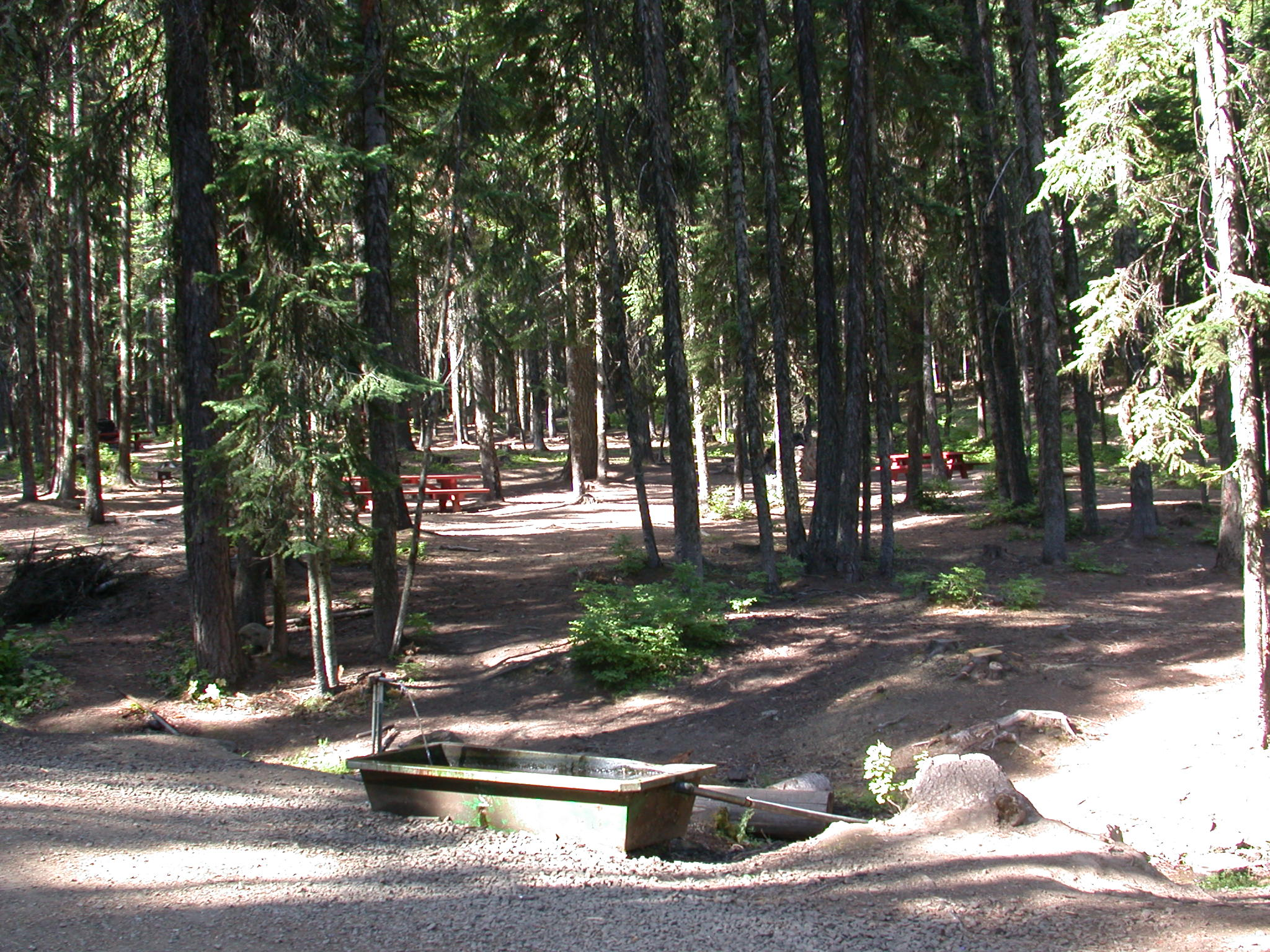 Umatilla National Forest - Big Springs Campground