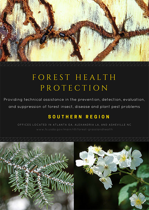 Forest Health Protection Southern Region
