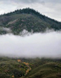 Fog circling the rolling foothills and chaparral in the Berryessa Snow Mountain National Monument.