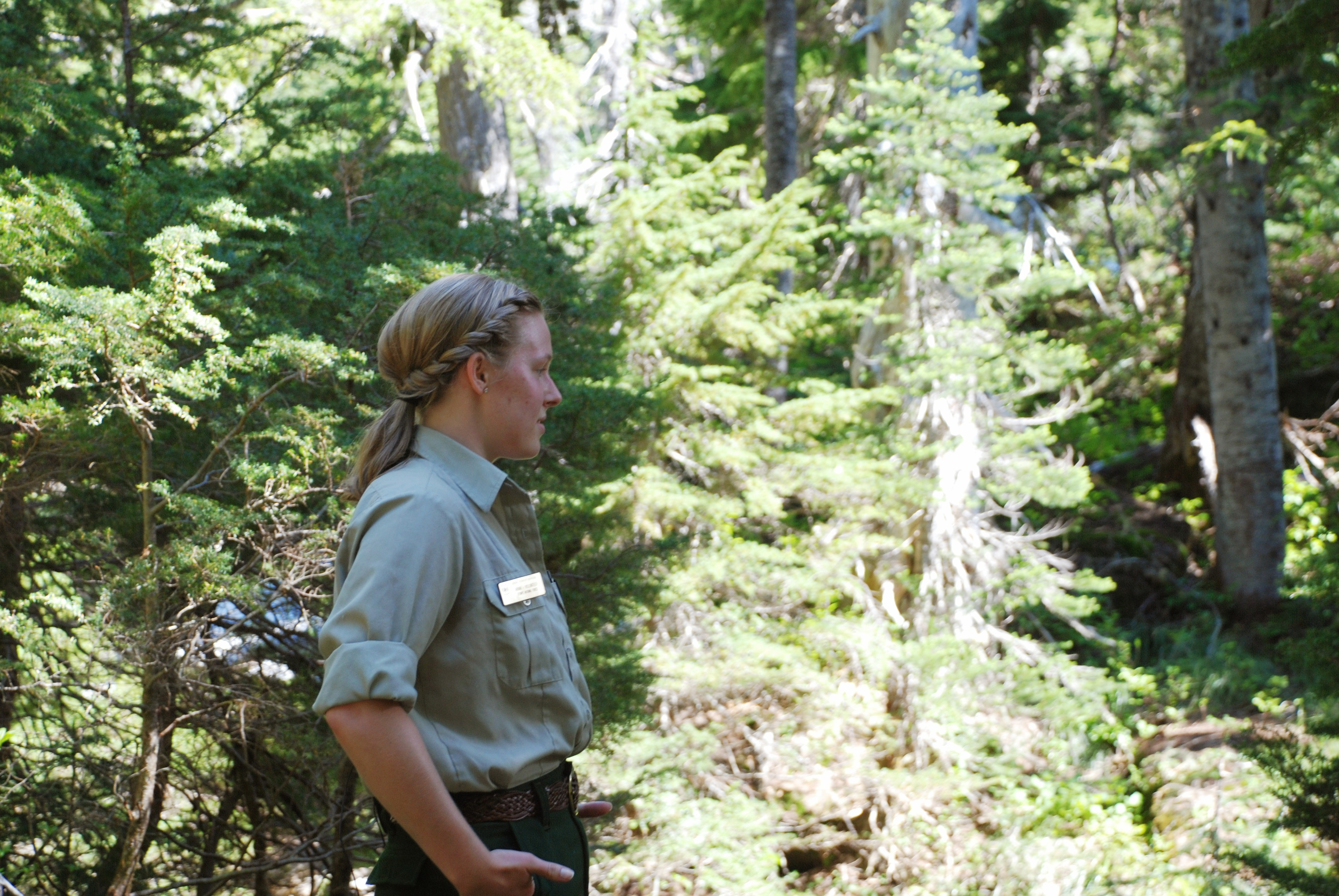 Female Forest ranger profile with forested background.