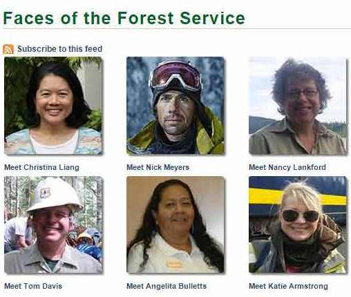 Profiles of Forest Service Employees
