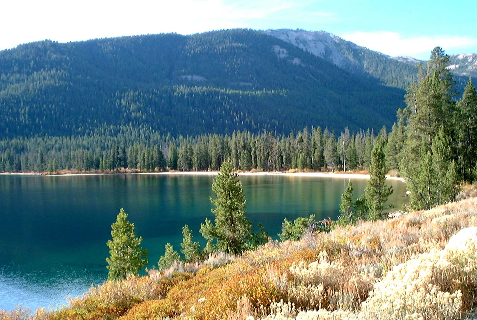 Body of water surrounded by vegetation, pine trees and tree covered mountain side in the background
