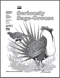 Cover page for a sage-grouse book for children.