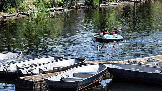 Visitors set out to explore Lynx Lake in a rented paddle boat.