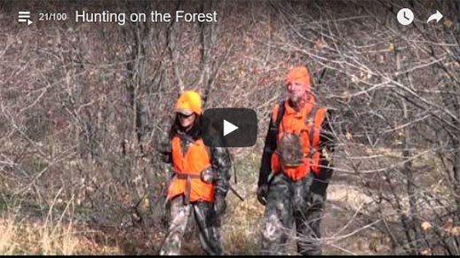 Two people with hunter orange on walking through some trees that have already lost their leaves.