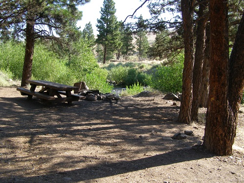 Rustic campsite with fire ring and picnic table near a river.