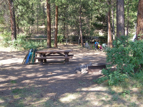 Campsite in an open forested setting.
