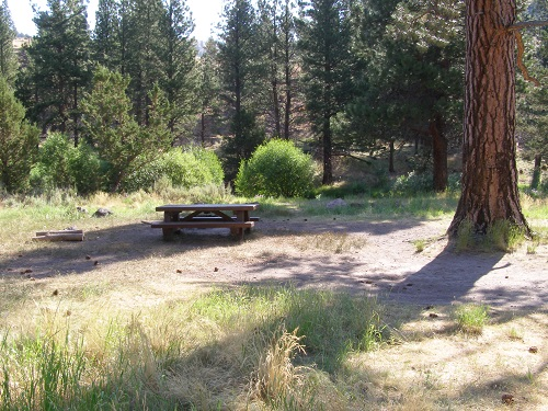 Campsite at Jones Crossing with picnic table.