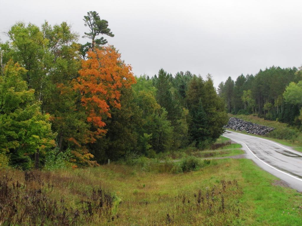 Early fall along the Caribou Trail.