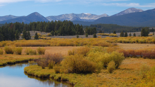 Fall colors on the Beaverhead-Deerlodge National Forest