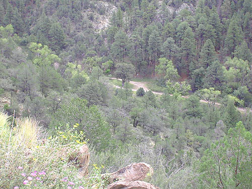 View Down to Lower Gallinas Campground