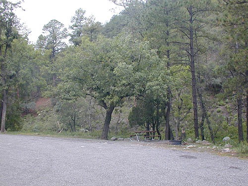 Campsite at Upper Gallinas Campground