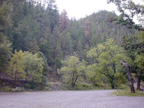 View across Upper Gallinas Campground to the road