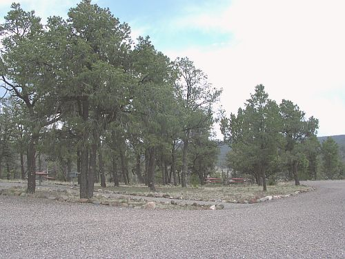 Group area campsites at Pinon Campground