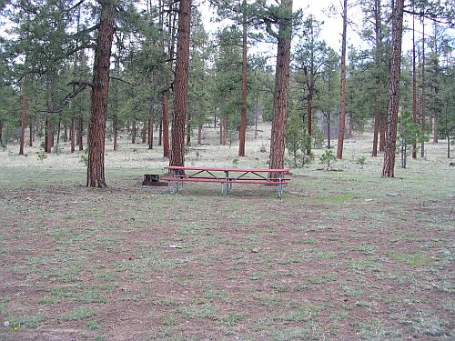 Camp site with table and fire ring at Valle Trio Vences Campground