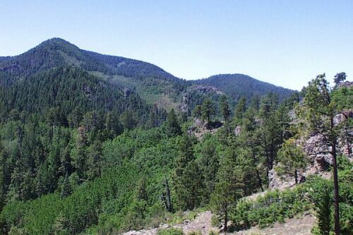 Black Range Crest Trail - 79