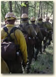 Idaho City hotshot crew on the line