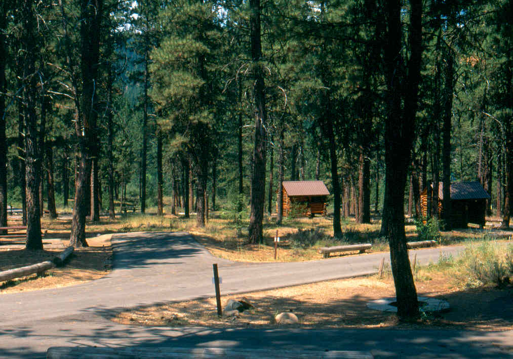 Grayback Gulch Campground