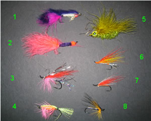 Recommended fishing flies