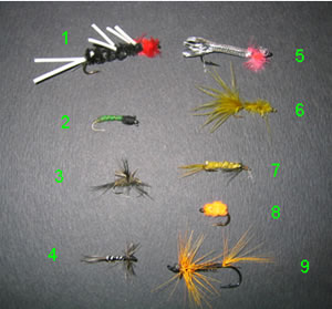 More recommended fishing flies