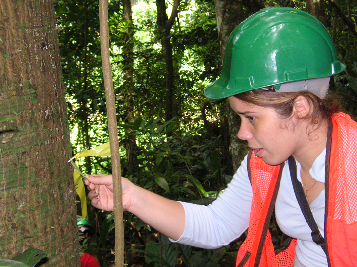 Student taking tree measurements