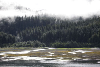 Mist shrouded hills provide a backdrop for the winding arms of the Copper River Delta