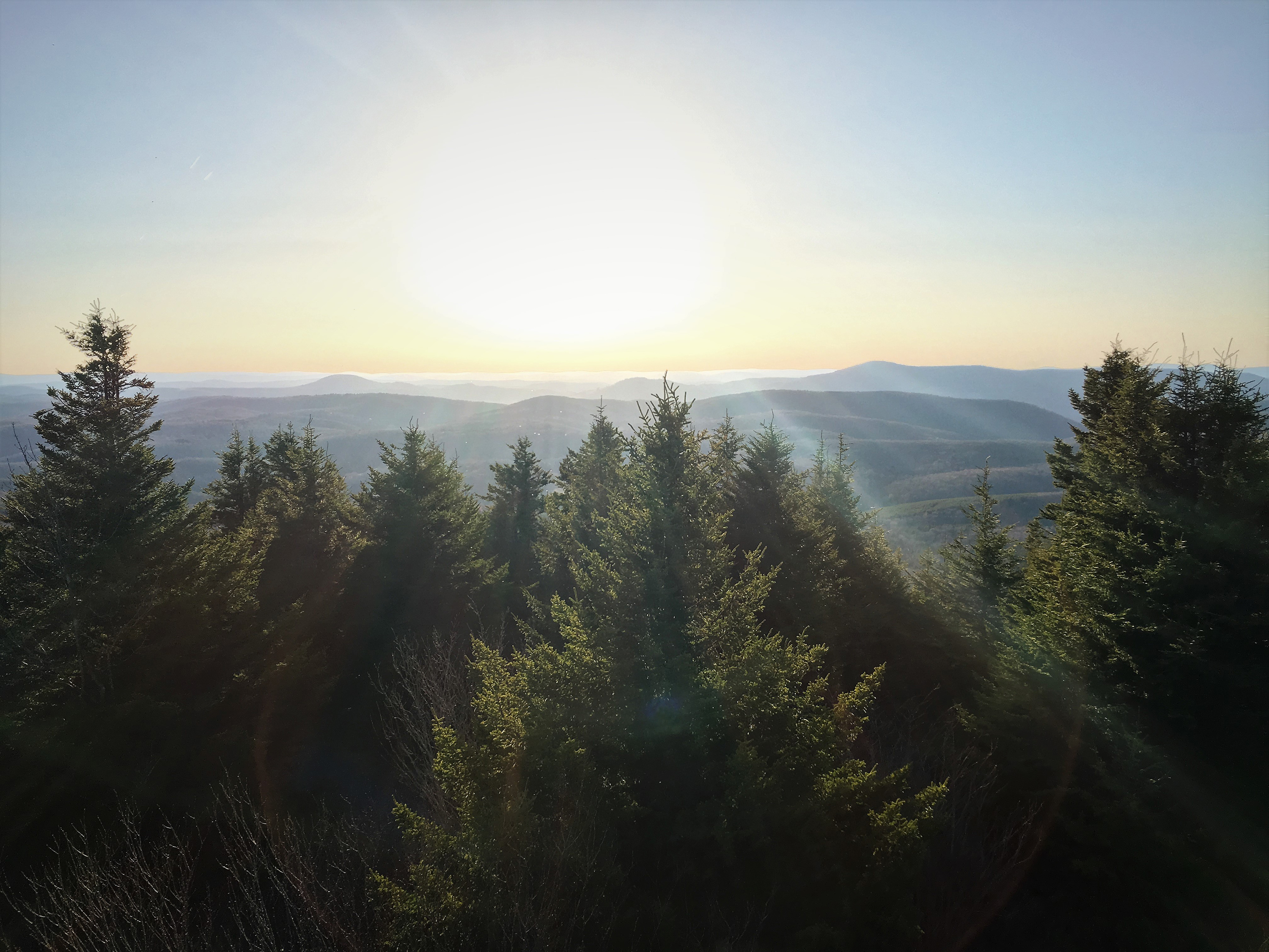 The view from Spruce Knob
