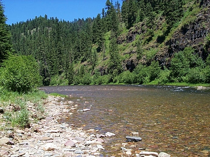 Photo of the Coeur d'Alene River from Devil's Elbow campground