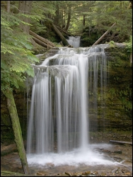 Photo of Fern Falls along the Shadow Falls Trail