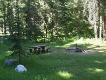 Photo of a shaded campsite at Honeysuckle Campground