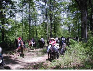 Group of horse back riders ready to ride Wayne NF trails