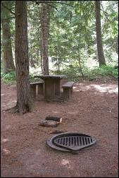 Photo of one of Outlet's shady sites, complete with a picnic table and cooking grill.