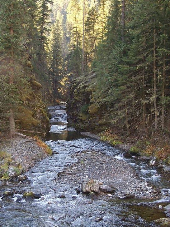 Photo of Sisters Creek gorge on the St. Joe Ranger District