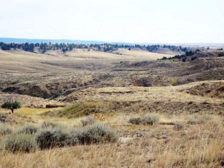 Buffalo Gap National Grassland Landscape