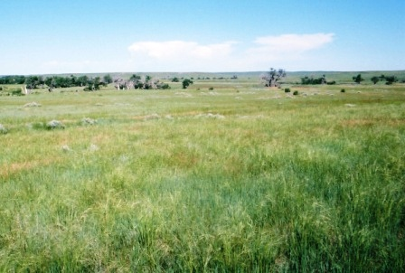 Pine Ridge Ranger District - Oglala National Grassland