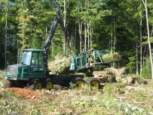A slash bundler gathers woody biomass into manageable bundles.