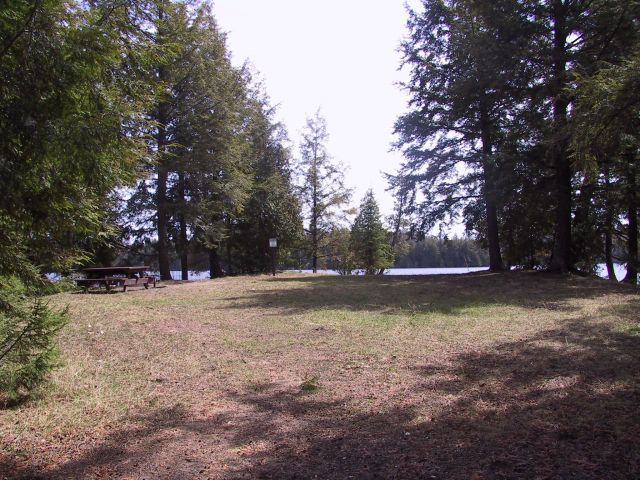 Open camping area at Ewing Point