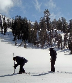 Forest Service employees survey the snow pack