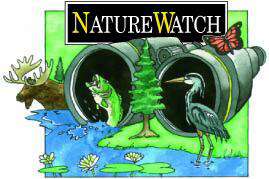 Nature Watch Logo
