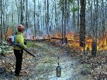 A fire technician monitors a controlled burn along a fire line.