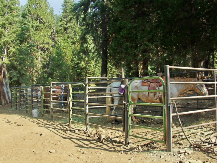 Horse Corrals at Carter Meadows