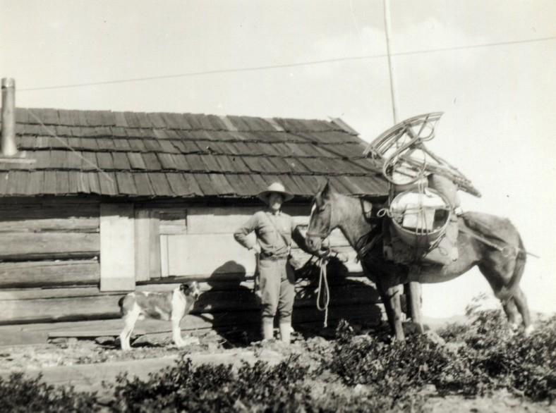 Hallie M. Daggett and her pack horse ready to leave the Eddy Gulch Station in the fall.