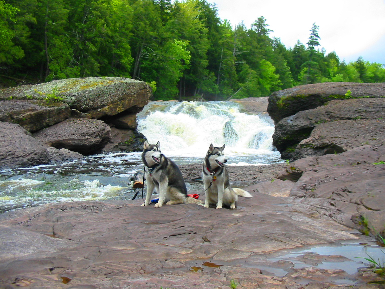 Sandstone Waterfalls with dogs