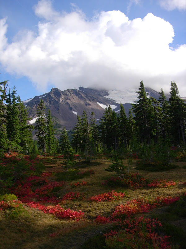 Image of Mt. Jefferson Wilderness